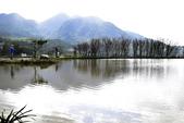 三芝秘境-水中央:_DSC0655.JPG