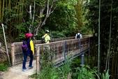 司馬庫斯巨木步道:DSC_6222.JPG