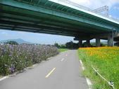 鐵馬行:鐵馬行-台北市基隆河右岸-洲美大橋 (15).jpg