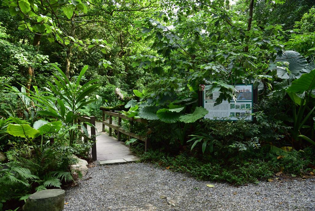 富陽自然生態公園 (11).jpg - 富陽自然生態公園