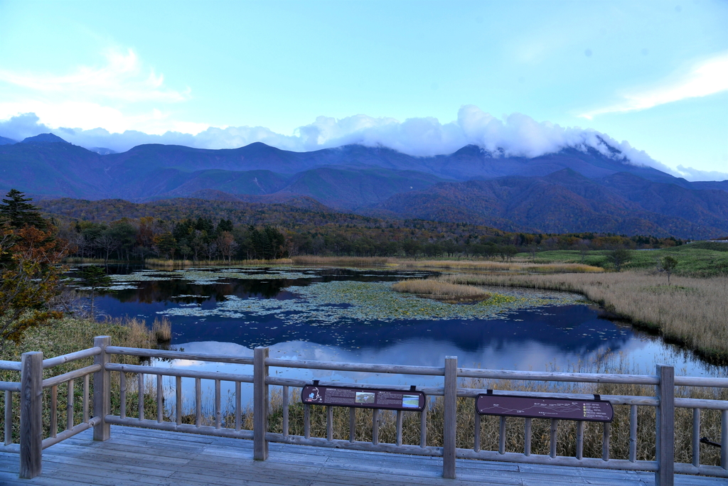 知床五湖 (30).JPG - 北海道-知床五湖