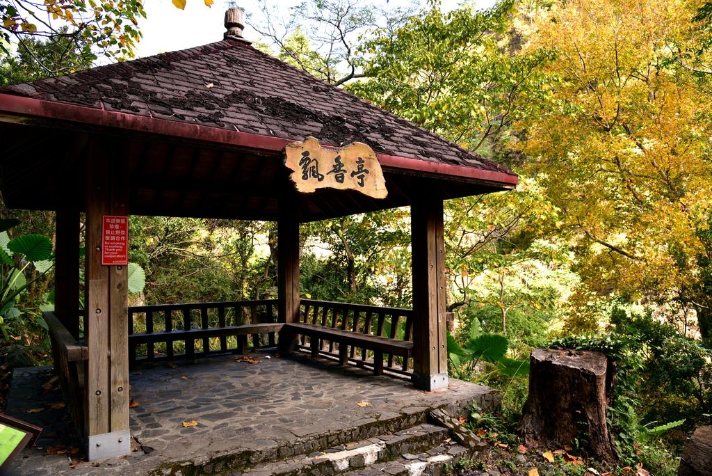 八仙山國家森林遊樂區 (5).JPG - 八仙山國家森林遊樂區