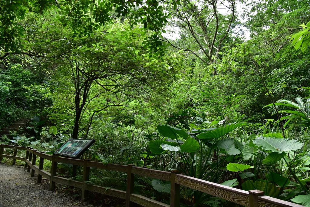 富陽自然生態公園 (15).JPG - 富陽自然生態公園
