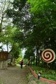綠光森林:綠光森林 (10).JPG