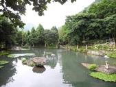 峇里森林溫泉渡假村:峇里森林溫泉渡假村371 (1).jpg