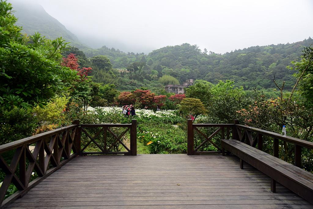 DSC_9999-09.JPG - 苗榜花園餐廳