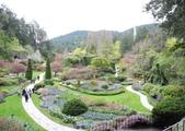 維多利亞布查花園:維多利亞布查花園_1000420_0510 829.jpg
