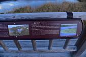 北海道-知床五湖:知床五湖 (27).JPG