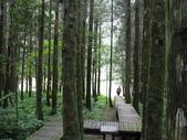 明池國家森林遊樂區:明池國家森林遊樂區 051.jpg