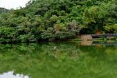 龍潭湖:DSC_2864.JPG