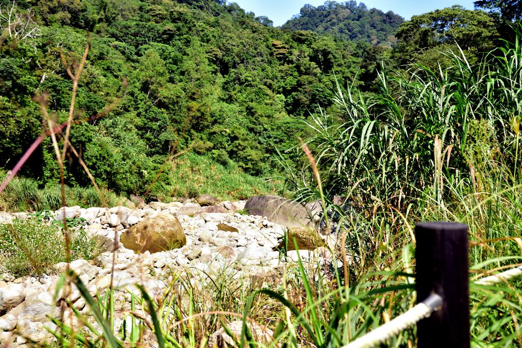 蓬萊溪護魚步道  (5).jpg - 蓬萊溪護魚步道