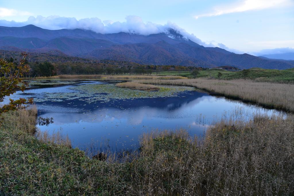 北海道-知床五湖:知床五湖 (28).JPG