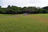 社頂自然公園,船帆石:社頂自然公園 (3).JPG