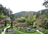 維多利亞布查花園:維多利亞布查花園_1000420_0510 832.jpg