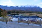 北海道-知床五湖:知床五湖 (29).JPG