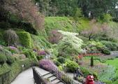 維多利亞布查花園:維多利亞布查花園_1000420_0510 834.jpg