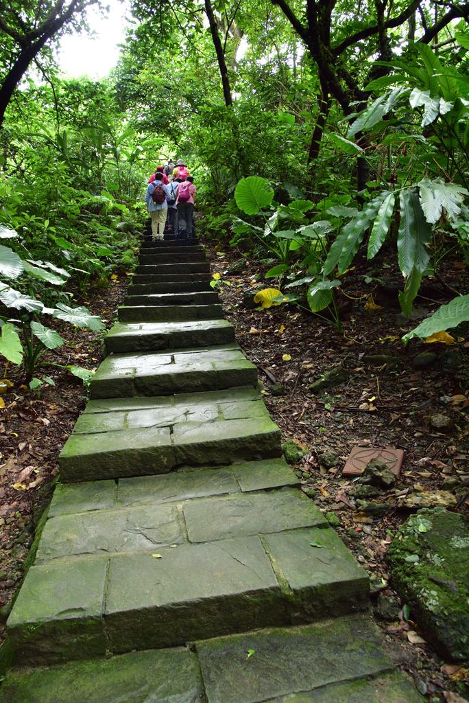 富陽自然生態公園 (19).jpg - 富陽自然生態公園