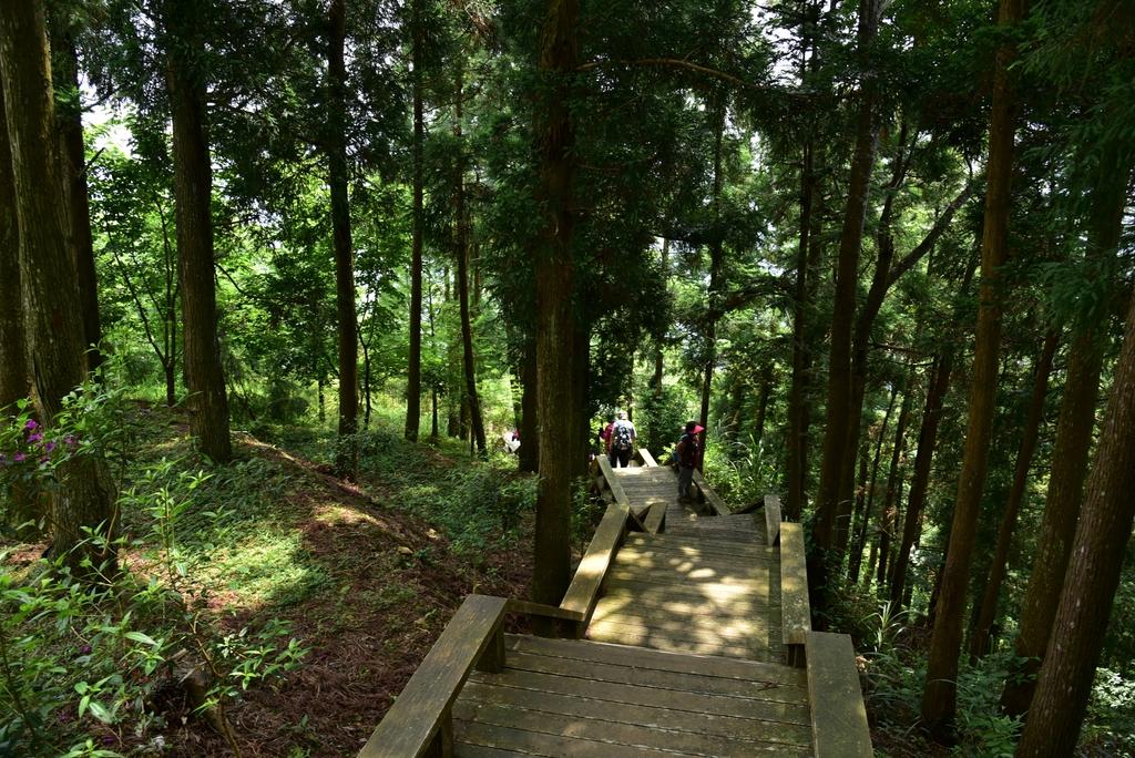 DSC_6411.JPG - 數碼天空景觀園區