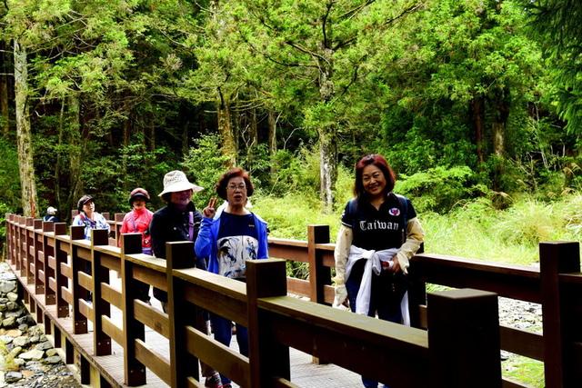 榛山森林浴步道 (4).JPG - 觀霧國家森林遊樂區-大鹿林道西線,榛山森林浴步道