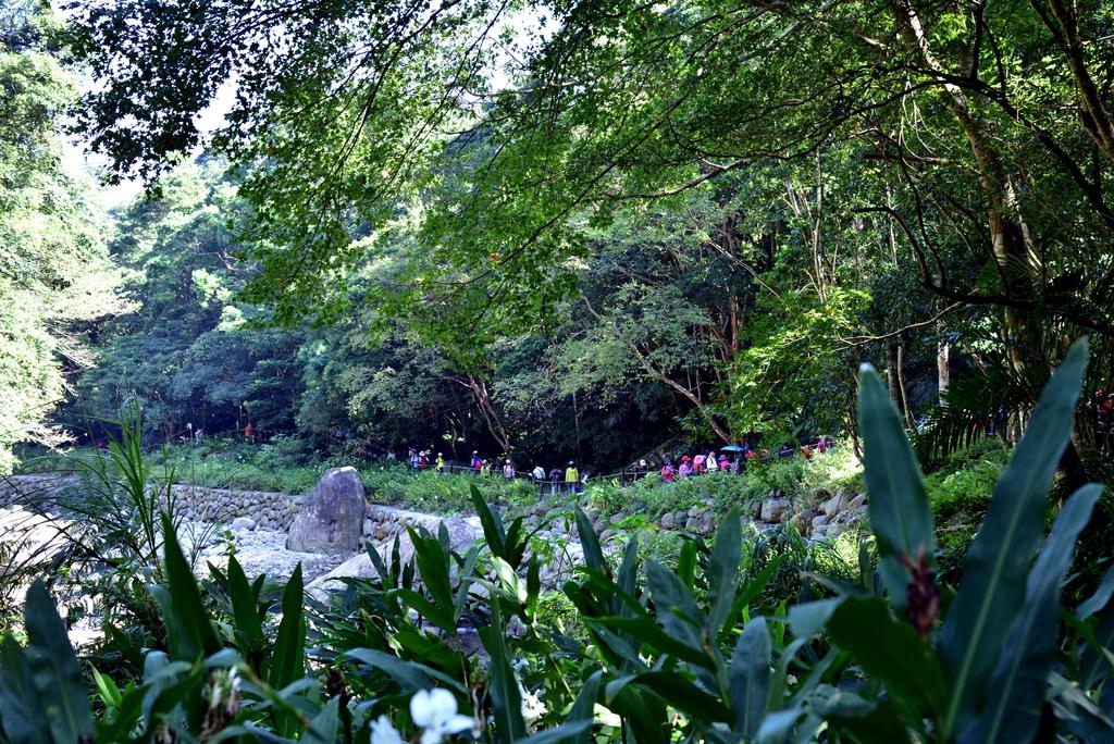 蓬萊溪護魚步道  (9).jpg - 蓬萊溪護魚步道