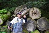 拉拉山國有林自然保護區:_DSC0321.JPG