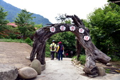 司馬庫斯巨木步道:DSC_6218.JPG