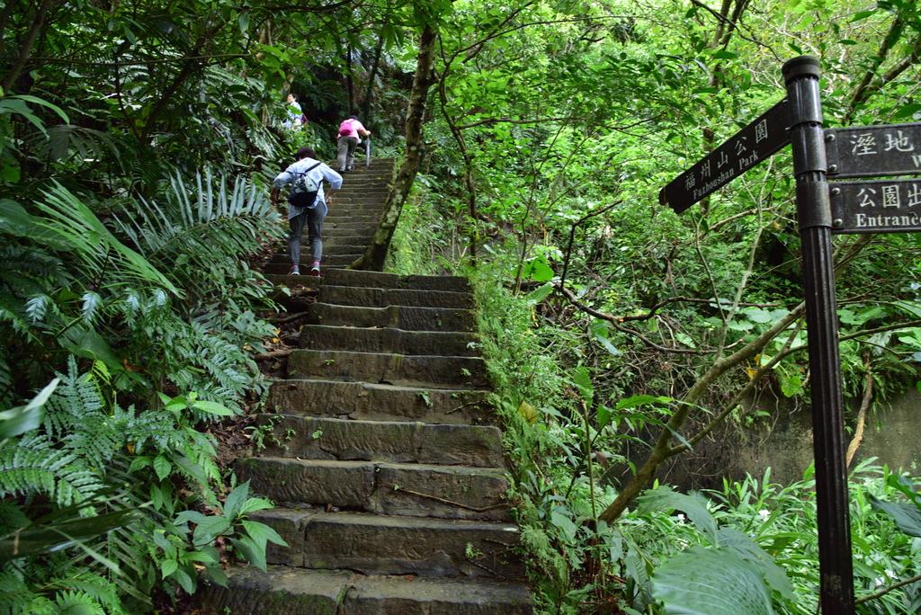 富陽自然生態公園 (23).jpg - 富陽自然生態公園