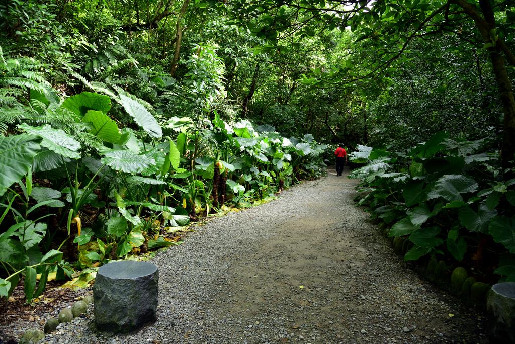 富陽自然生態公園 (12).jpg - 富陽自然生態公園