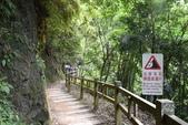 竹坑溪步道:竹坑溪步道 (6).JPG