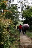二尖山步道,碧湖山觀光茶園,麗景精品休閒旅館:二尖山步道 (9).JPG