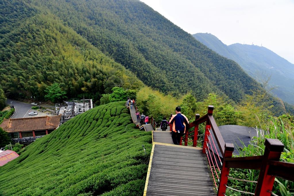 二尖山步道 (15).JPG - 二尖山步道,碧湖山觀光茶園,麗景精品休閒旅館