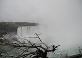 多倫多尼加拉瀑布:多倫多尼加拉瀑布_1000420_0510 756.jpg