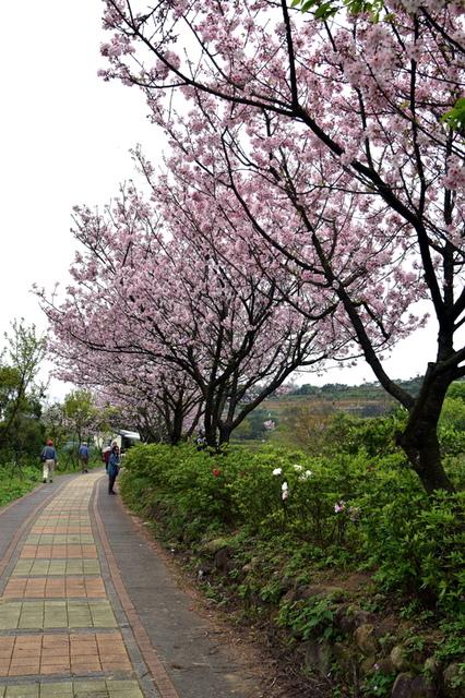 DSC_0066.JPG - 三生步道