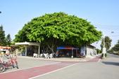 新竹市十七公里海岸風景區:_DSC0081.JPG