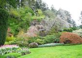 維多利亞布查花園:維多利亞布查花園_1000420_0510 847.jpg