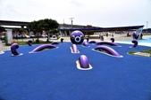 大佳河濱公園海洋遊戲場:DSC_3292.JPG