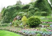 維多利亞布查花園:維多利亞布查花園_1000420_0510 849.jpg