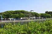 新竹市十七公里海岸風景區:_DSC0125.JPG