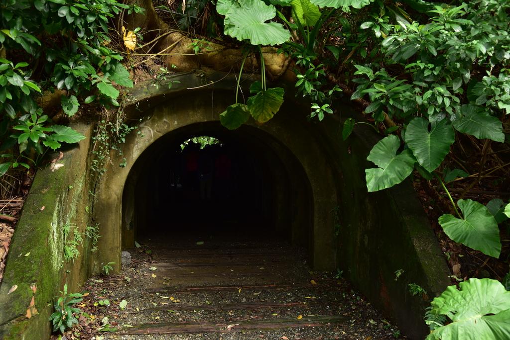 富陽自然生態公園 (7).JPG - 富陽自然生態公園