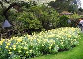 維多利亞布查花園:維多利亞布查花園_1000420_0510 850.jpg