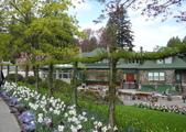 維多利亞布查花園:維多利亞布查花園_1000420_0510 945.jpg