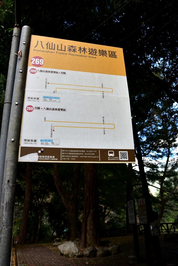 八仙山國家森林遊樂區 (33).JPG - 八仙山國家森林遊樂區