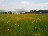 鐵馬行:鐵馬行-台北市基隆河右岸-河雙21號公園(14).jpg