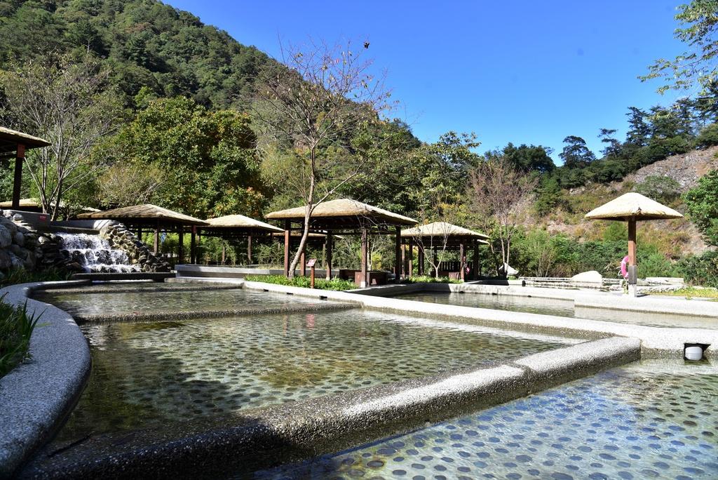 八仙山國家森林遊樂區 (15).JPG - 八仙山國家森林遊樂區