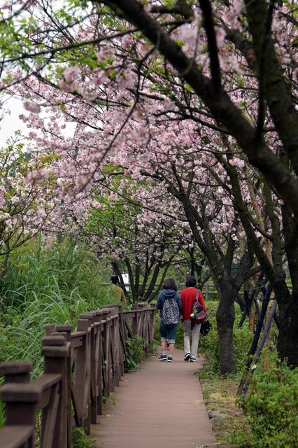 DSC_0076.JPG - 三生步道