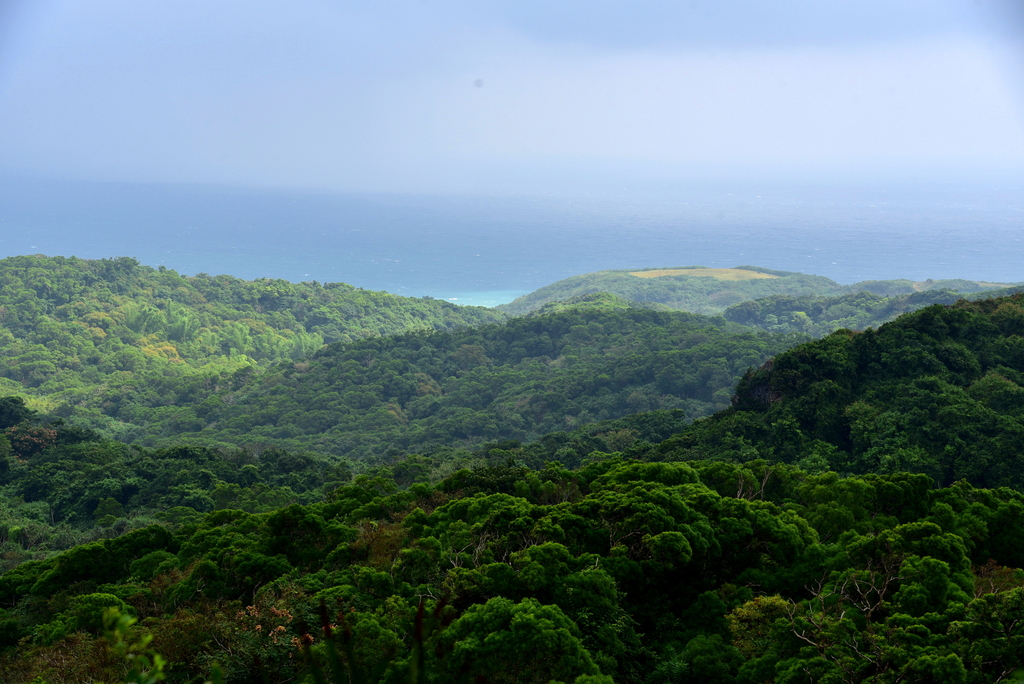 社頂自然公園,船帆石:社頂自然公園 (1).JPG