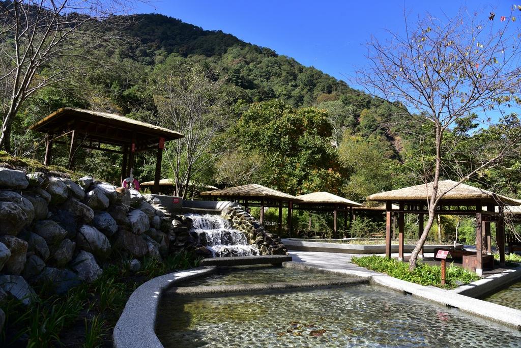 八仙山國家森林遊樂區 (16).JPG - 八仙山國家森林遊樂區