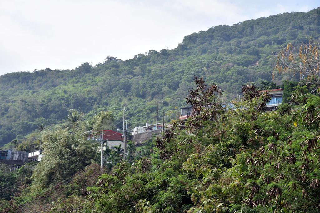 多良車站 (25).JPG - 台東多良車站,向陽薪傳木工坊