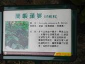 100年7月26日金山之旅:金山-獅頭山公園-蘭嶼蘋婆 029.jpg