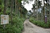 竹坑溪步道:竹坑溪步道 (4).JPG